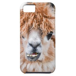 Alpaca Funda Para iPhone SE/5/5s