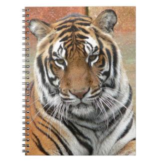 Alquileres Tigres en la reflexión Cuaderno