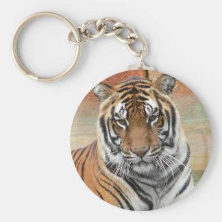 Alquileres Tigres en la reflexión Llavero