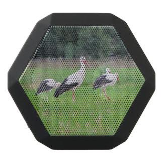 Altavoz Negro Con Bluetooth Cigüeñas blancas de la migración, ciconia, en un