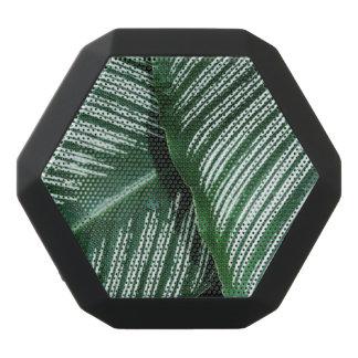 Altavoz Negro Con Bluetooth Las hojas del verde con blanco rayan el primer