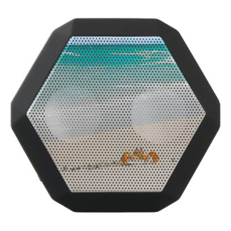 Altavoz Negro Con Bluetooth Playa y cangrejo hermosos de Sandy
