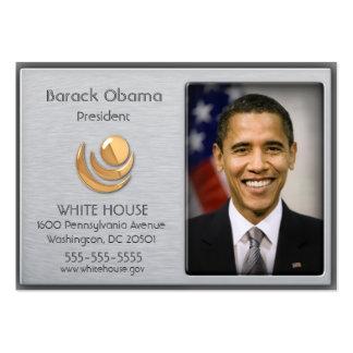 Aluminio cepillado con las tarjetas del perfil del tarjetas de visita grandes