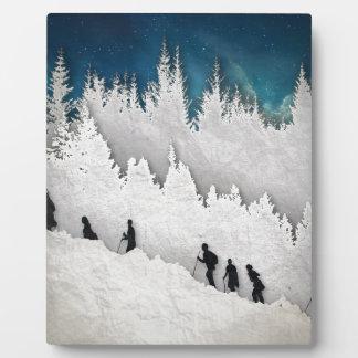 Alza II de la nieve Placa Expositora
