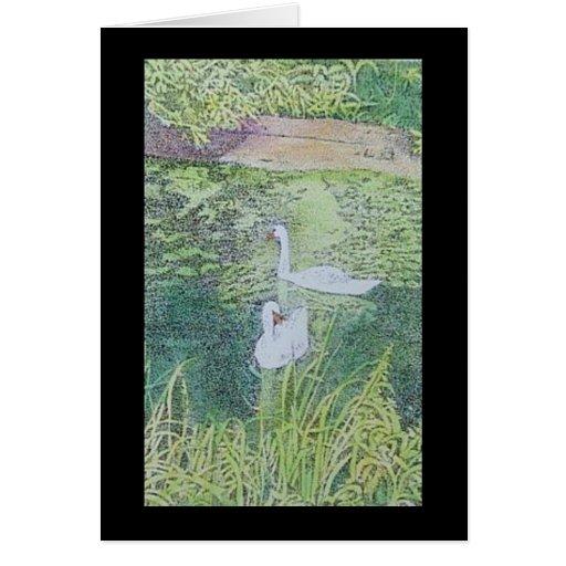 amantes del cisne tarjeton