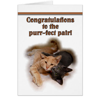 Amantes del gato que casan la tarjeta de la