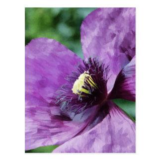 Amapola violeta postal