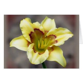 Amarillo mantecoso en el gris - Daylily Tarjeta De Felicitación