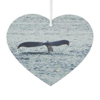 Ambientador Cola 406 de la ballena
