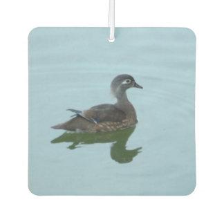 Ambientador de aire femenino de la foto del pato