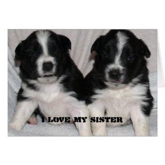 ame a mi hermana, puppys lindos tarjeta de felicitación