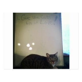 Ame el gato postal