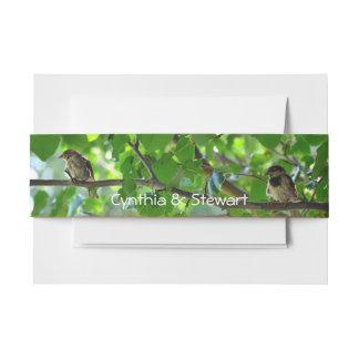 Ame los pájaros en una banda del vientre de la cintas para invitaciones