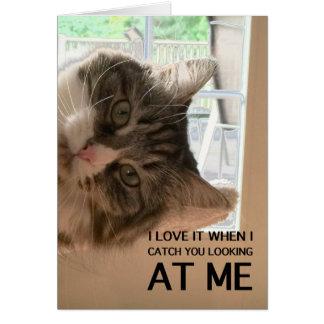 Ame su tarjeta de nota de Cattitude