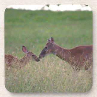 Ámele los ciervos posavasos