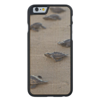 America Central, El Salvador, Océano Pacífico Funda De iPhone 6 Carved® Slim De Arce
