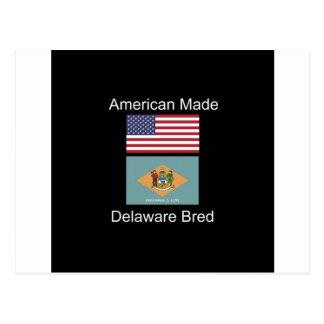 """""""Americano llevado. Delaware crió"""" diseño de la Postal"""