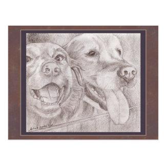 Amigos del perro que dibujan la postal
