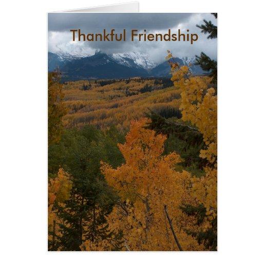 Amistad agradecida felicitaciones