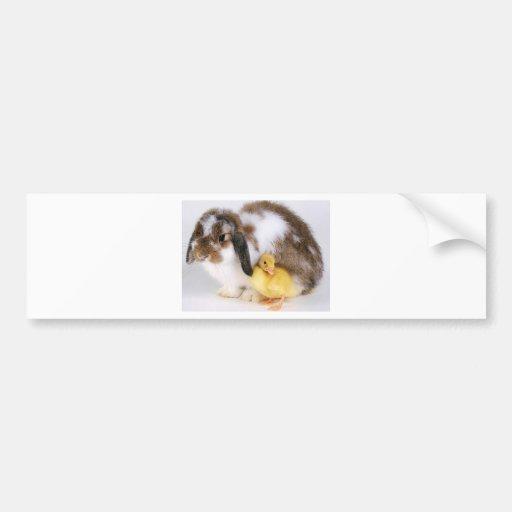 amistad animal etiqueta de parachoque
