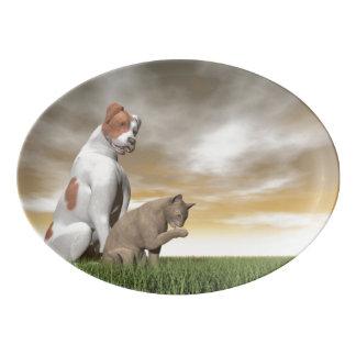 Amistad del perro y del gato - 3D rinden Plato De Porcelana