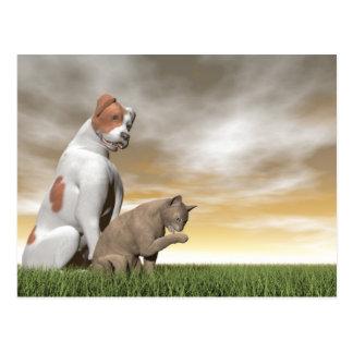 Amistad del perro y del gato - 3D rinden Postal