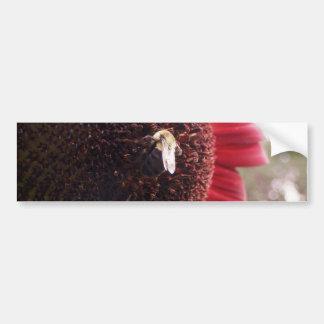 Amistad dulce etiqueta de parachoque