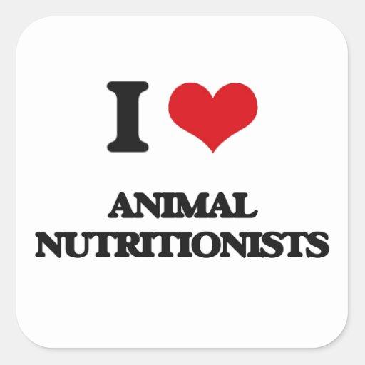 Amo a los nutricionistas animales calcomania cuadradas personalizadas