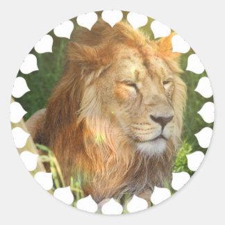 Amo a los pegatinas de los leones etiqueta redonda