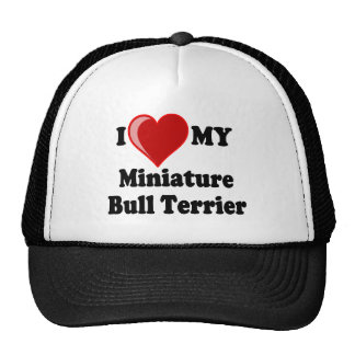 Amo (corazón) mi perro miniatura de bull terrier gorro