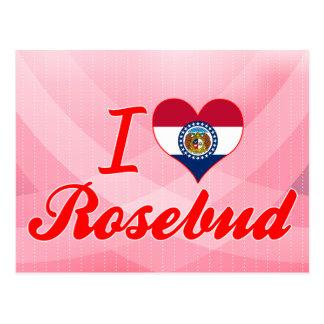 Amo el capullo de rosa, Missouri Postales