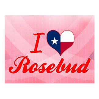 Amo el capullo de rosa, Tejas Tarjeta Postal