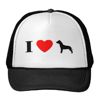 Amo el gorra de los pitbulls