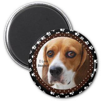 Amo el imán de los beagles