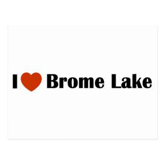 Amo el lago Brome Postal