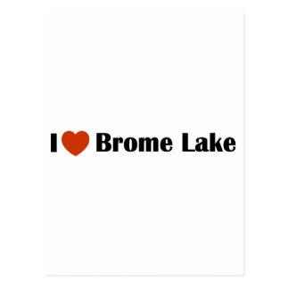 Amo el lago Brome Tarjeta Postal