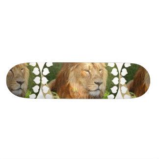 Amo el monopatín de los leones