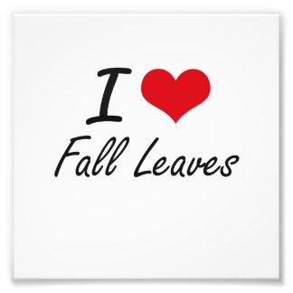 Amo las hojas de la caída fotografía