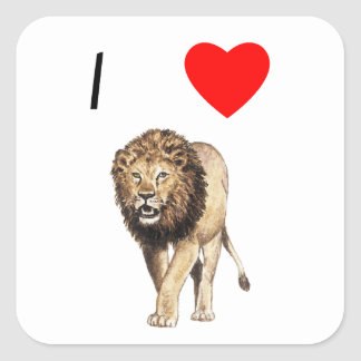 Amo leones (3) calcomanía cuadrada