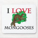 Amo mangostas tapetes de ratones