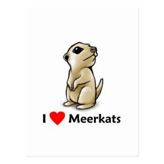 Amo Meerkats Postal