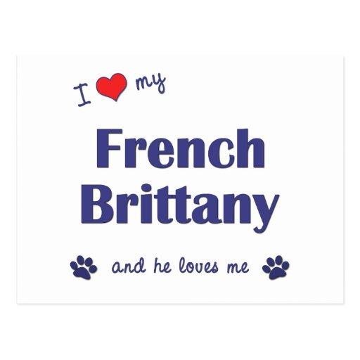 Amo mi Bretaña francesa (el perro masculino) Tarjeta Postal