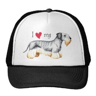 Amo mi Cesky Terrier Gorro De Camionero