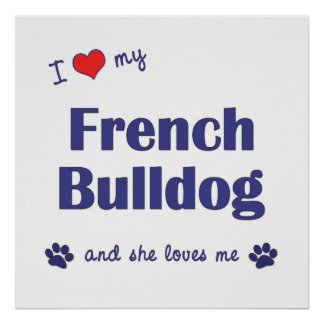Amo mi dogo francés el perro femenino impresiones