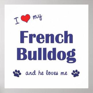 Amo mi dogo francés el perro masculino posters