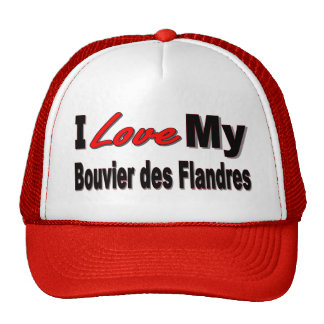 Amo mi mercancía del DES Flandres de Bouvier Gorro