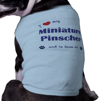 Amo mi Pinscher miniatura (el perro masculino) Camiseta Sin Mangas Para Perro