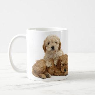 ¡Amo mi taza del cockapoo!