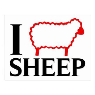 Amo ovejas postal