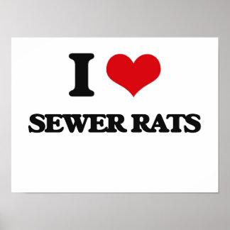 Amo ratas de alcantarilla póster